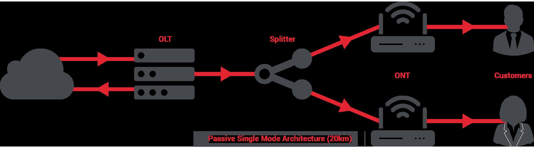 POLAN Flow Diagram