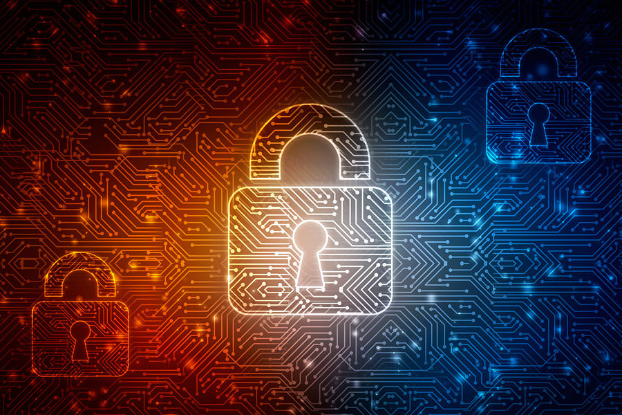 POLAN Network Security